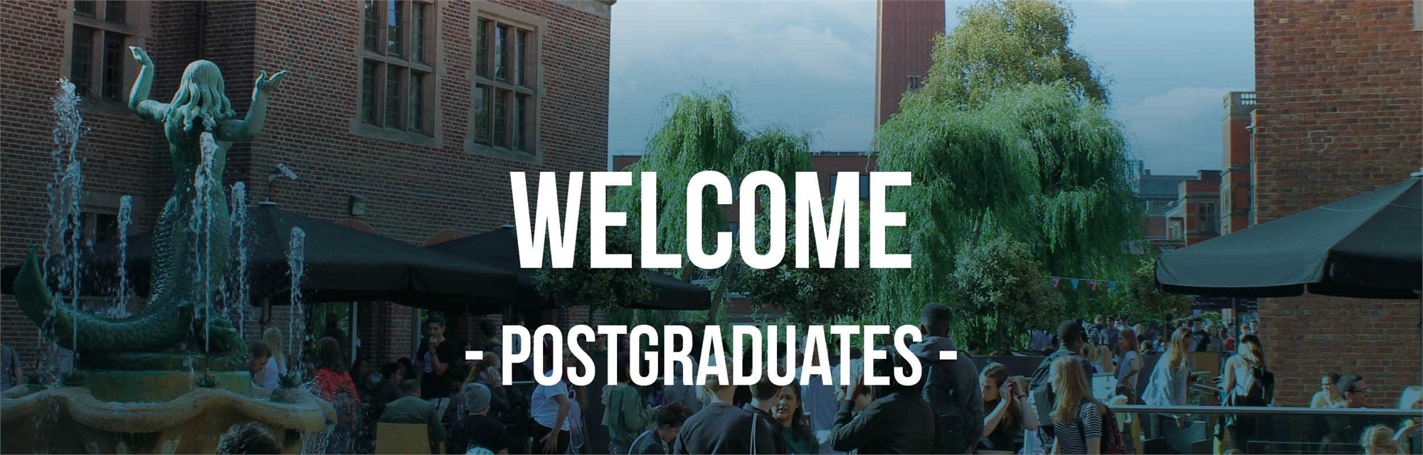 Welcome to the Postgraduate Homepage